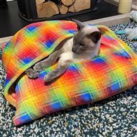 Allison Maryon's Rainbow Pet Snuggle Bed with Cuddle Fleece Kit