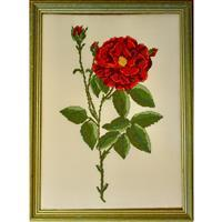 Cross Stitch Guild Red Rose on Linen - Exclusive to Sewing Street