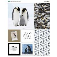 Animal of the Month Penguin Fabric Panel (70 x 95cm)