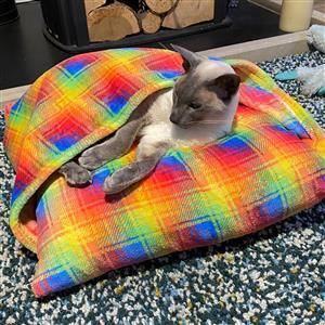 Allison Maryon's Rainbow Pet Snuggle Bed with Cuddle Fleece Kit