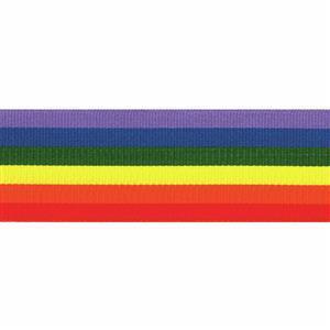 Rainbow Ribbon 1m x 25mm